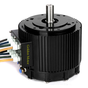 10 KW BLDC Electric Golden Motor Thailand