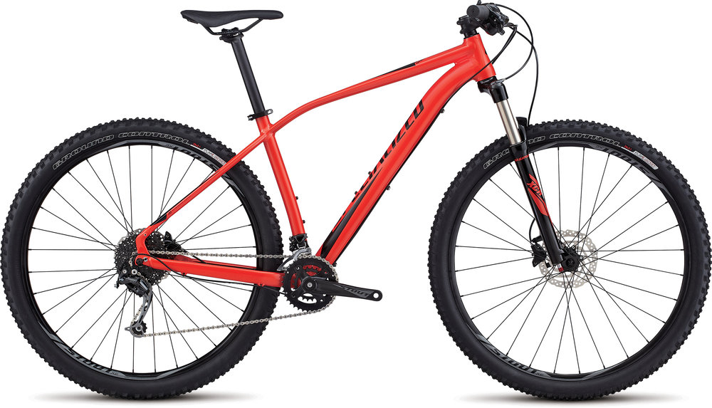 Specialized Rock Hopper.jpg
