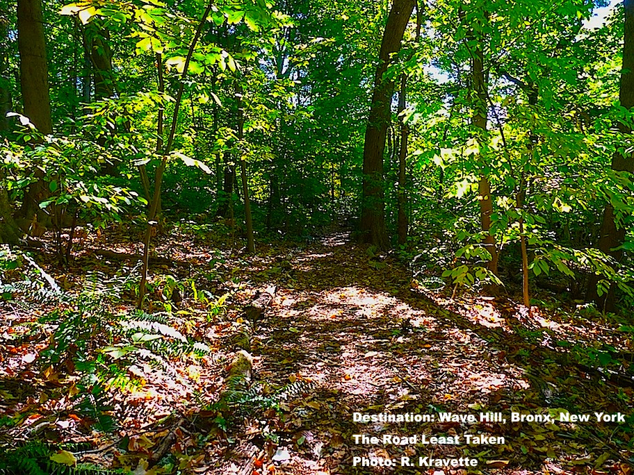 One of many trails throughout the park at Wave Hill, NY IMAGE: ©R. KRAVETTE