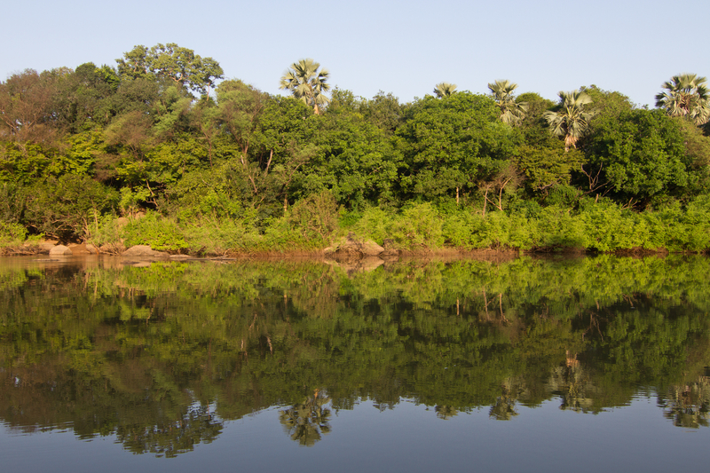 "Some of the planet's most beautiful and ecologically important places are in the least visited countries. This is a view of Senegal's Niokolo-Kobe National Park from the Gambia River. UNESCO describes it as having  ""outstanding universal value"" - and possibly painted dogs. Go explore! Image:  ©Antpun⎮Dreamstime.com"