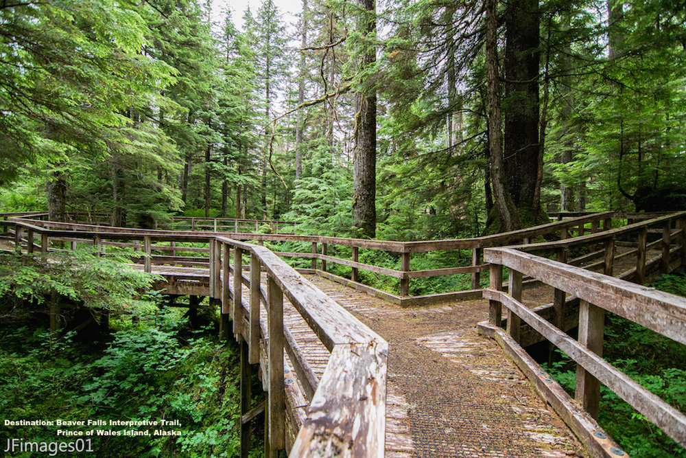 THE ACCESSIBLE RAISED WAKWAYS, LIKE THE BEAVER FALLS INTERPRETIVE TRAIL, MAKE EXPLORING PRINCE OF WALES ISLAND ENJOYABLE FOR THE WHOLE FAMILY. IMAGE: THANKS TO JFIMAGES.