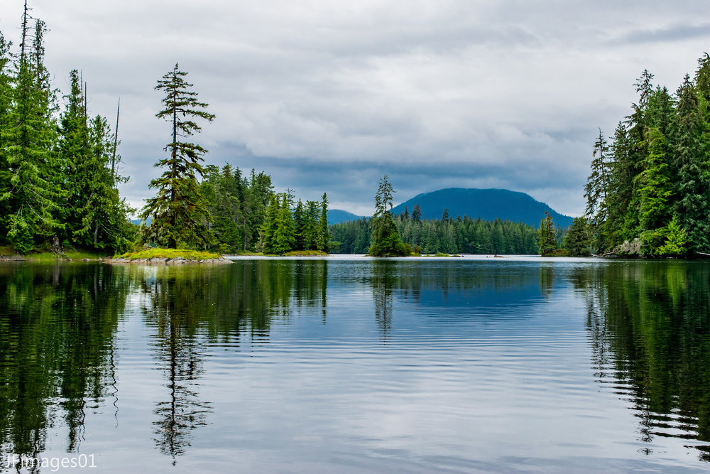 SARKER LAKE HAS A 15-MILE CANOE ROUTE (WITH SOME PORTAGE). WATCH FOR WILDLIFE, INCLUDING SITKA BLACK-TAIL DEER AND BLACK BEAR ALONG THE BANKS, EAGLES ARE HERE YEAR-ROUND, AND IT IS A FAVORITE OF WINTERING TRUMPETER SWANS. IMAGE: THANKS TO JFIMAGES01.
