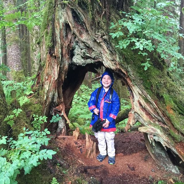 KIDS LOVE EXPLORING THE RAINFOREST AT PRINCE OF WALES ISLAND. IMAGE THANKS TO WHALE POINT CABIN, COFFMAN COVE, PRINCE OF WALES ISLAND.