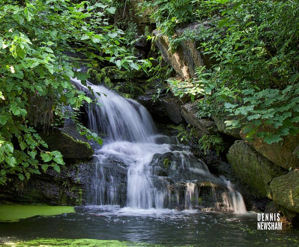 HIDDEN WATERFALLS ARE PART OF CENTRAL PARK SURPRISES.  THIS ONE IS IN THE SECTION CALLED THE NORTH WOODS. IMAGE: COURTESY OF DENNIS NEWSHAM