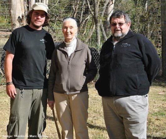 Marc, here with Jane Goodall and his dad, Phillip Cronje at the JGI Chimp Eden. Phillip was instrumental in starting the sanctuary, Marc helped manage and developed education programs for visitors. Image: thanks to ©Marc Cronje.