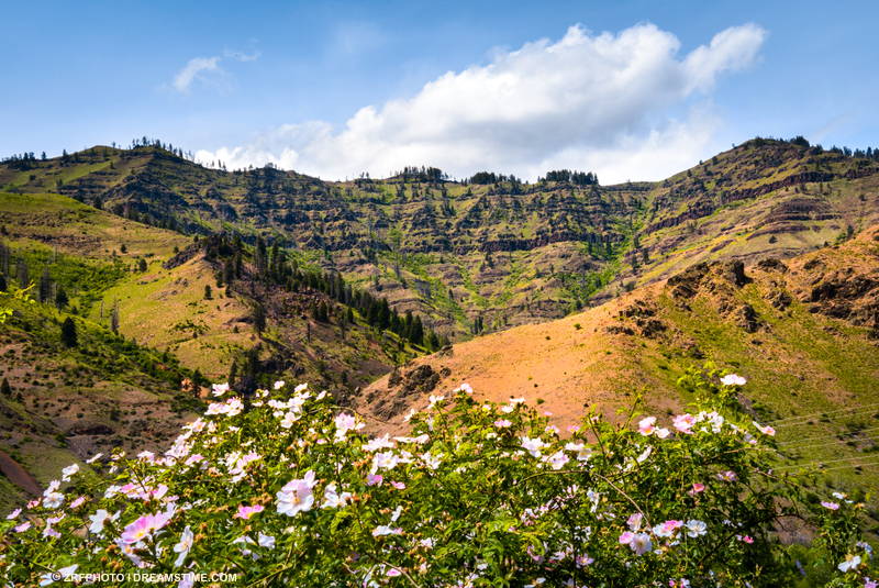 The last walk with Granddad was in Hells Canyon, Washington. Image:  ©Zrfphoto⎮Dreamstime.com