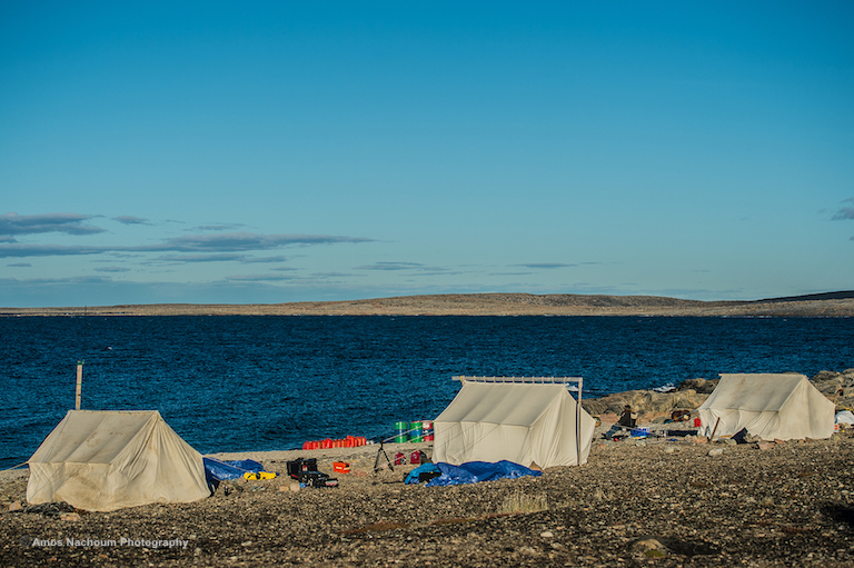 THE POLAR BEAR DIVING EXPEDITION CAMP AT ELLESMERE ISLAND, IN THE CANADIAN ARCTIC. IMAGE: COURTESY OF ©AMOS NACHOUM PHOTOGRAPHY