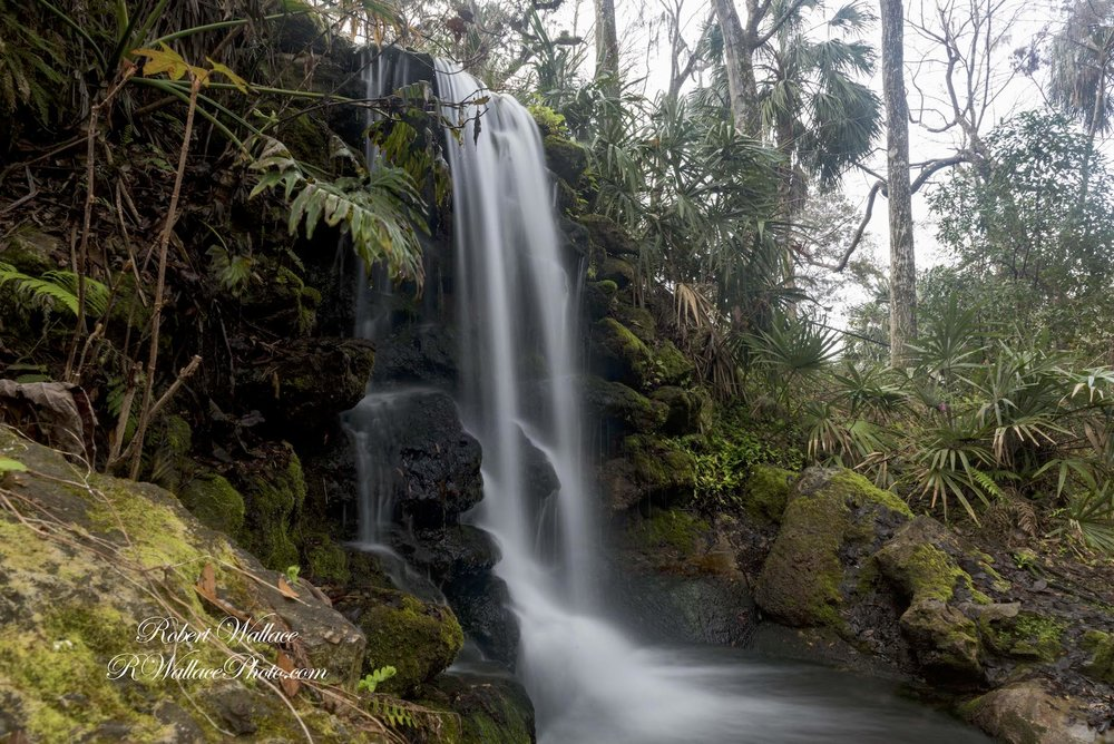 Rainbow-Springs-State-Park-Florida-Waterfalls-RobertWallace-Wildlife-Photographer.jpg