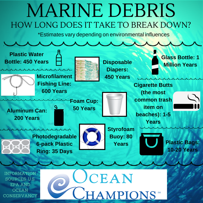 WE CAN ALL MAKE A DIFFERENCE FOR OCEAN HEALTH. IMAGE: OCEAN CHAMPIONS.