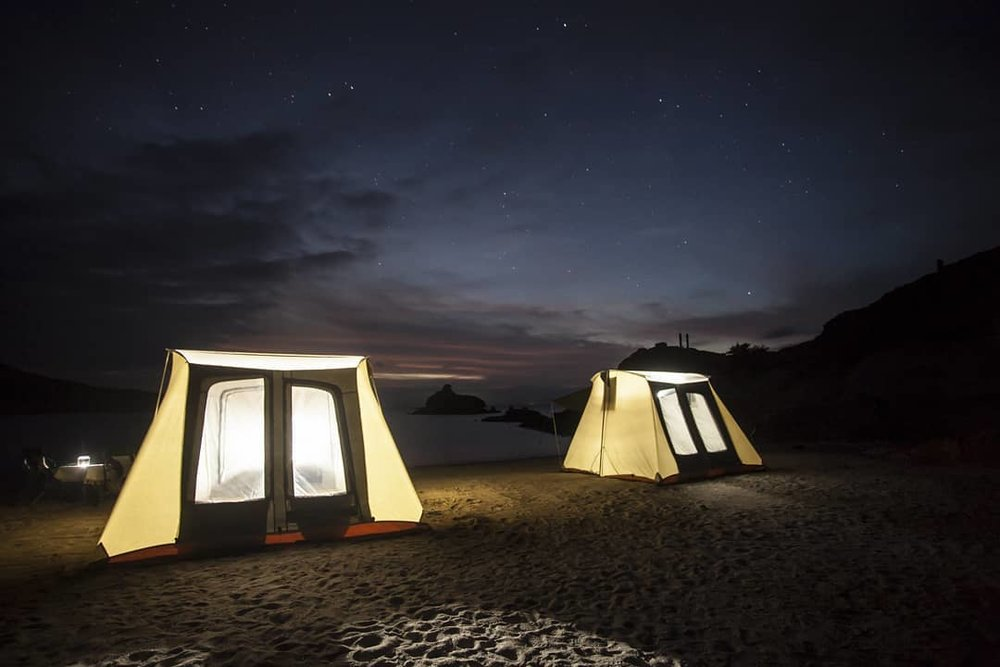 Night sky over the turtle camp at Magdalena Bay