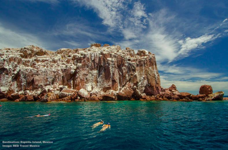 EXPLORE AMAZING ISLA ESPIR`ITU SANTO WHERE SEA LIONS AND SEA BIRDS BREED, AND RARE BLACK JACKRABBITS LIVE. IMAGE: RED TRAVEL MEXICO