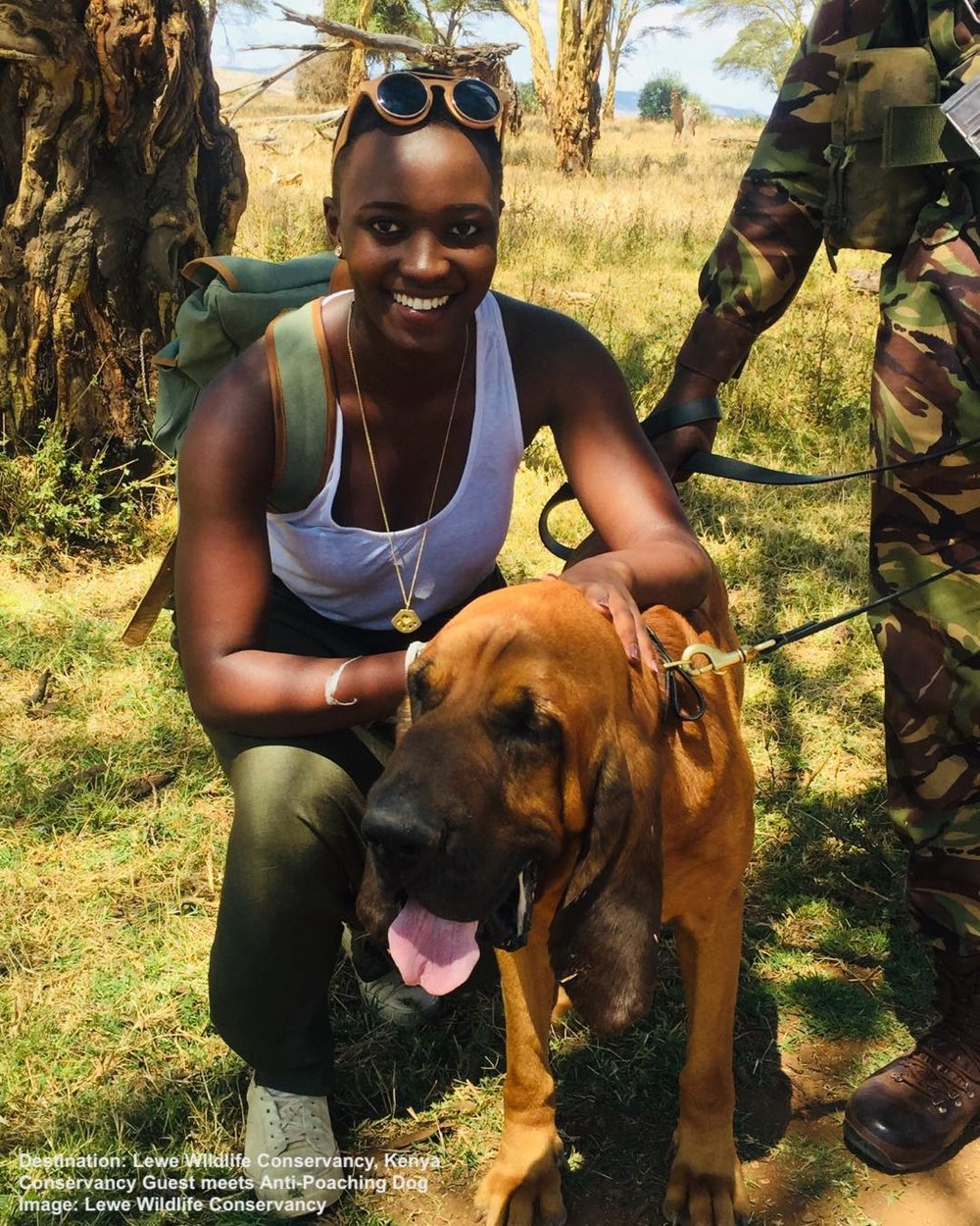 A GUEST MEETS ONE OF LEWA'S ANTI-POACHING TRACKER DOGS IMAGE:  LEWA CONSERVANCY, FACEBOOK