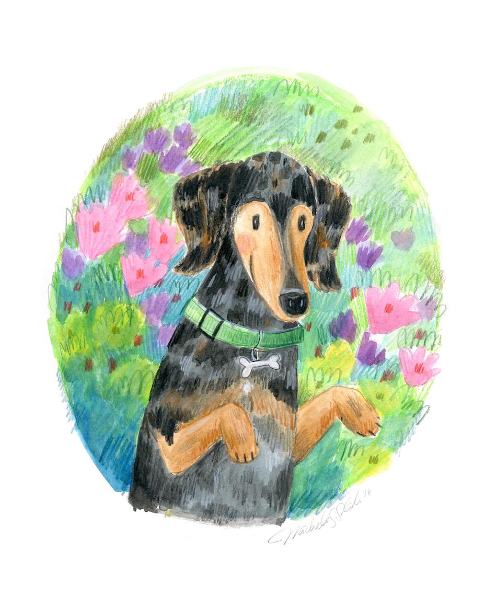 cute custom pet portrait, doxie