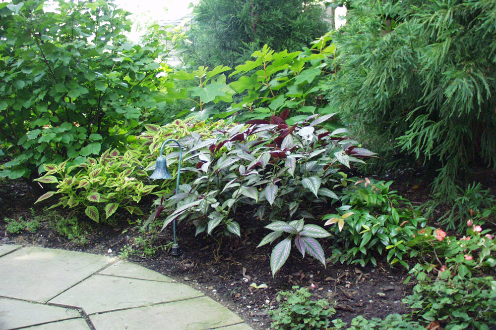 landscaping-maintenance-philly-suburb.jpg