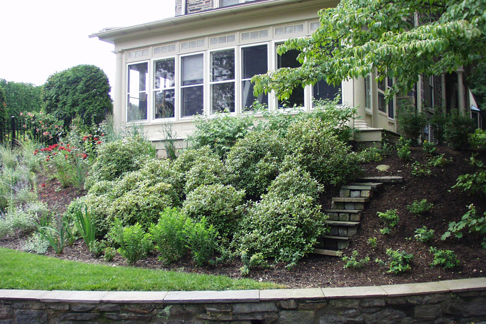 landscape-maintenance-phila-gardening.jpg