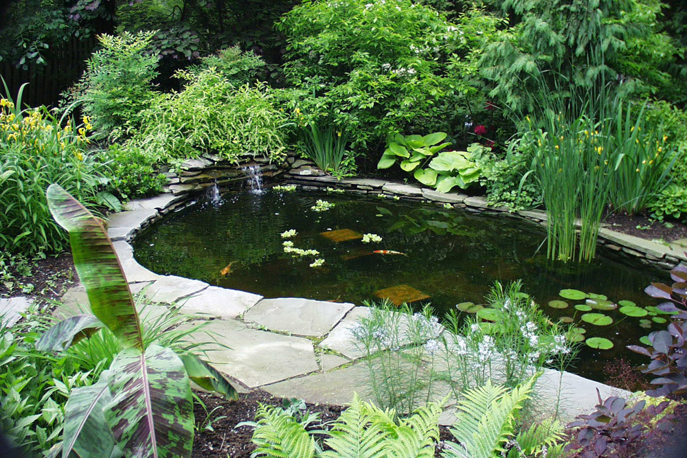 phila-landscaping-company-pond-fountain.jpg
