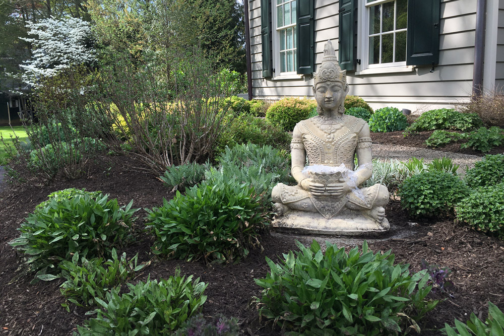 foundation-planting-buddha.jpg