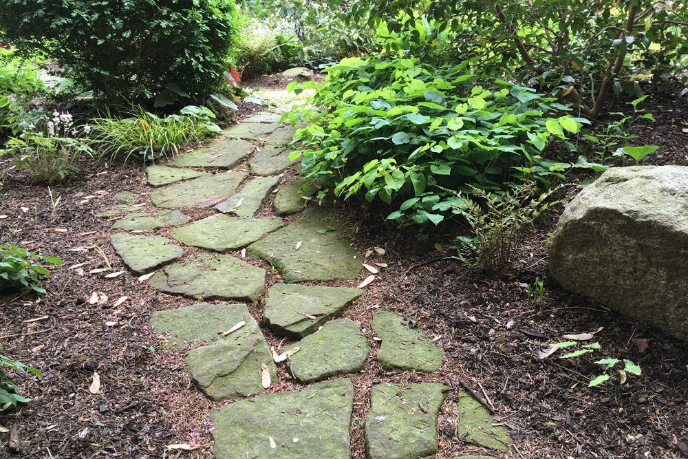 ... Broken Stone Pathway Harscape ...