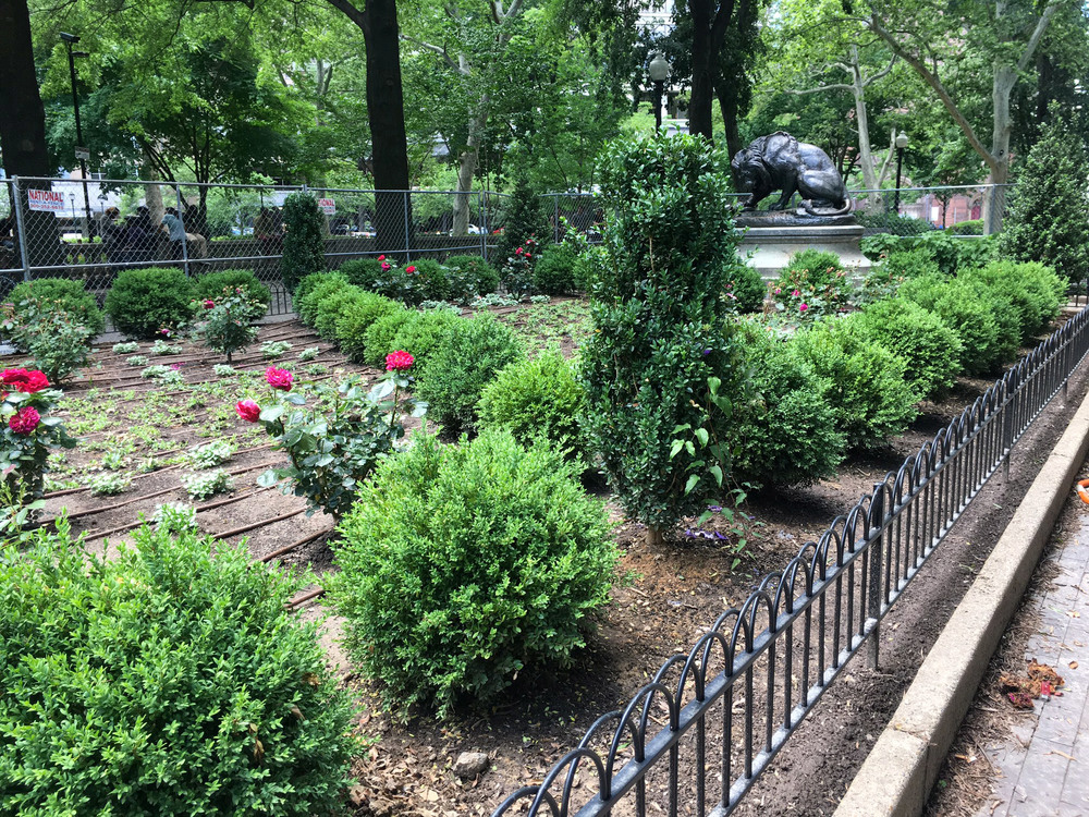 philadelphia-landscaping-elizabeth-haegele-2.jpg
