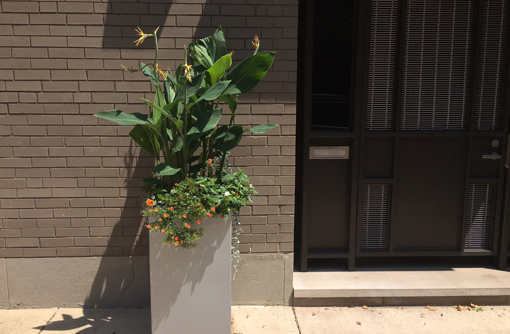 philadelphia-planter-windowbox.jpg