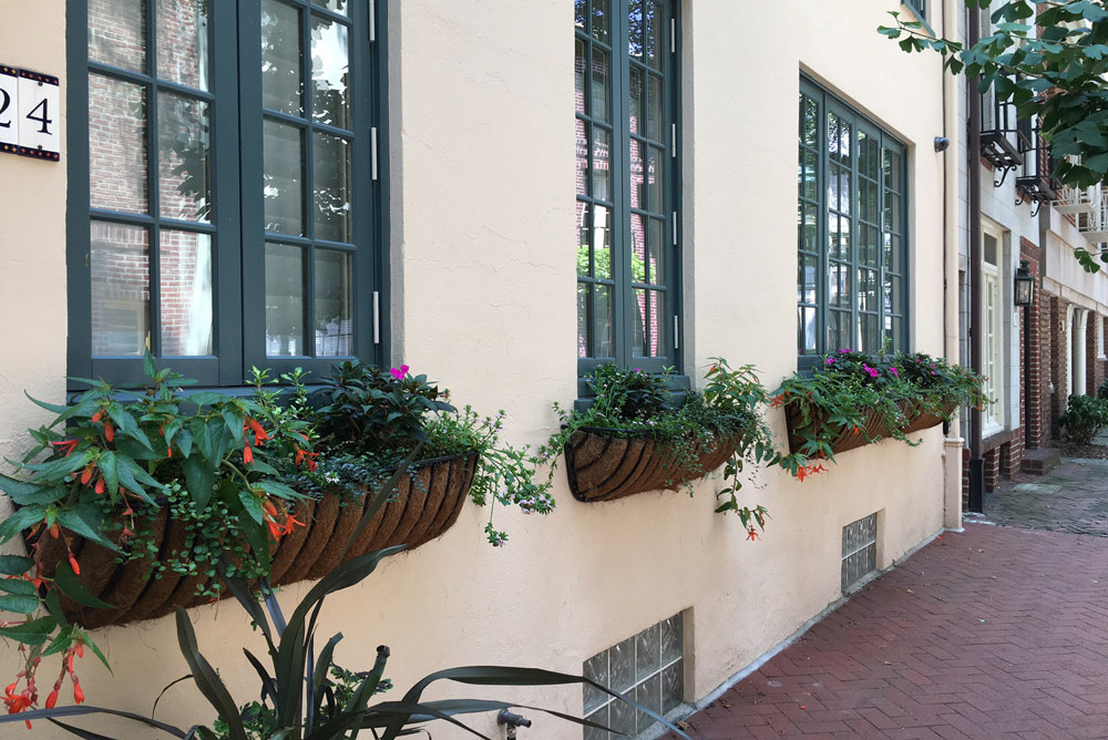 Window Boxes & Annual Planters