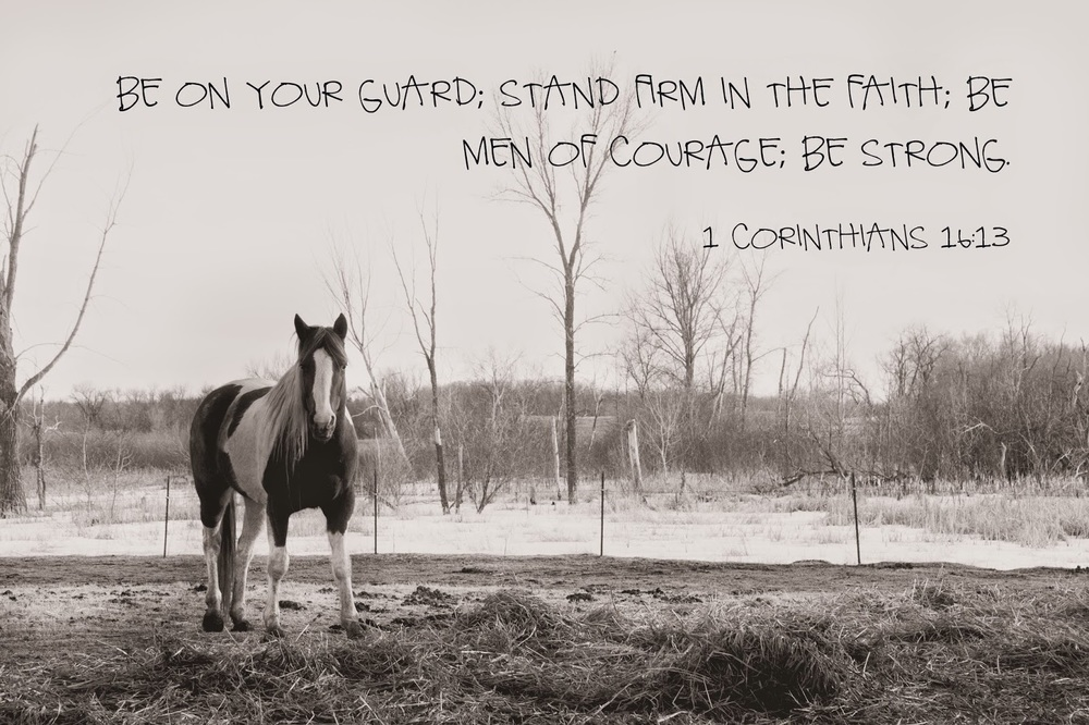 Detroit Lakes Photographer, horse, photo quote