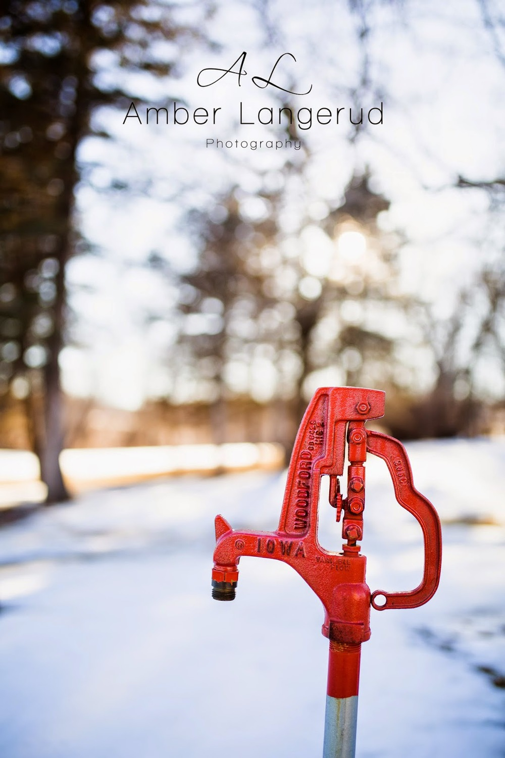 Detroit Lakes Area Photographer | Celebrating Spring 2015