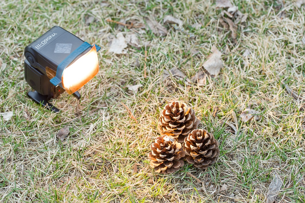 A Creative Photography Pinecone & Flash Test Shoot with Amber Langerud Photography