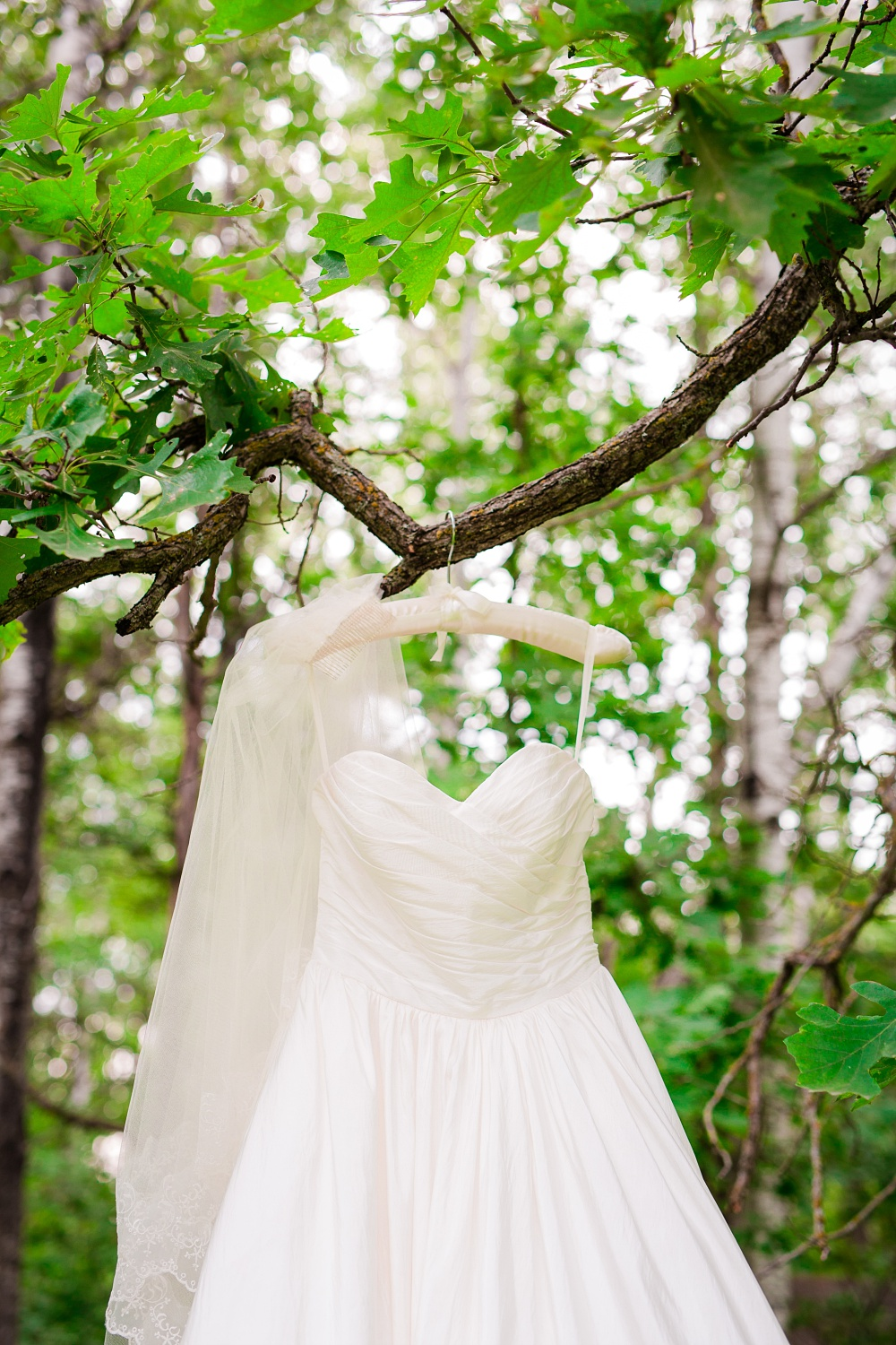 Wolf Lake, MN Country Styled Wedding, White Dress, Blue Suite | Photographed by Amber Langerud Photography | Wedding Dress & Veil hanging from oak tree