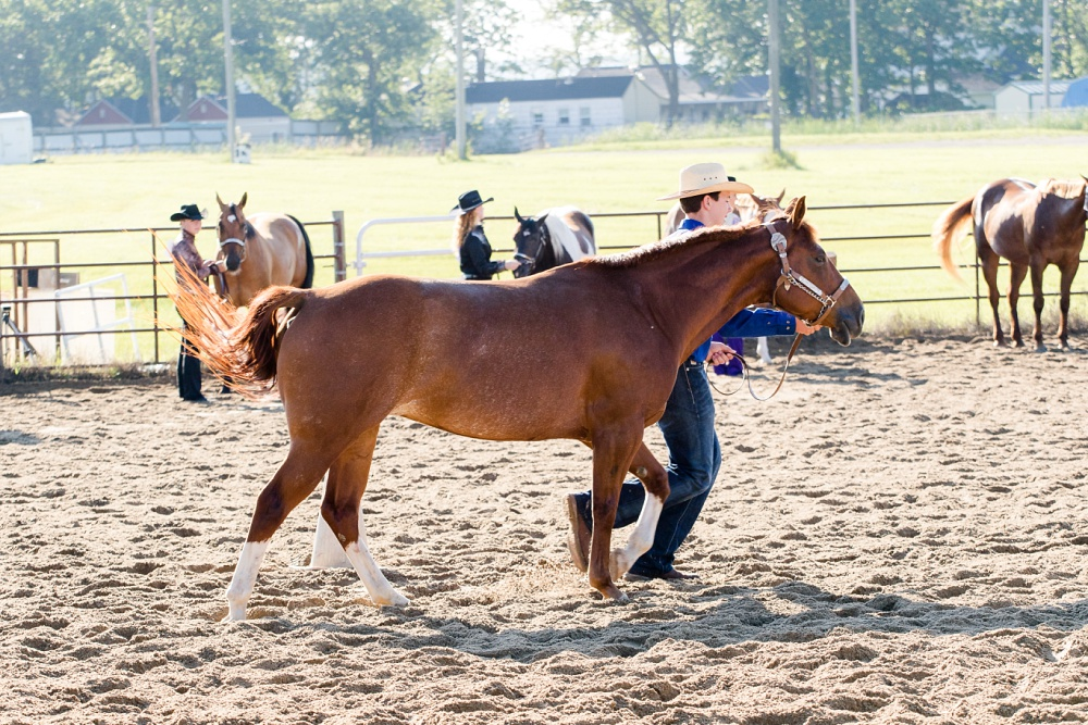2016 Becker County 4-H Horse Show in Detroit Lakes, MN   Showmanship