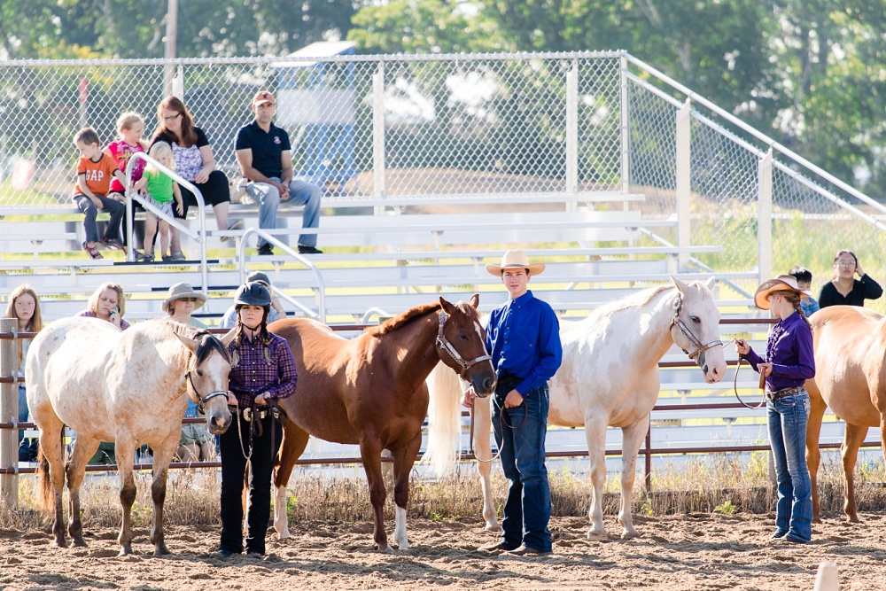 2016 Becker County 4-H Horse Show in Detroit Lakes, MN | Showmanship
