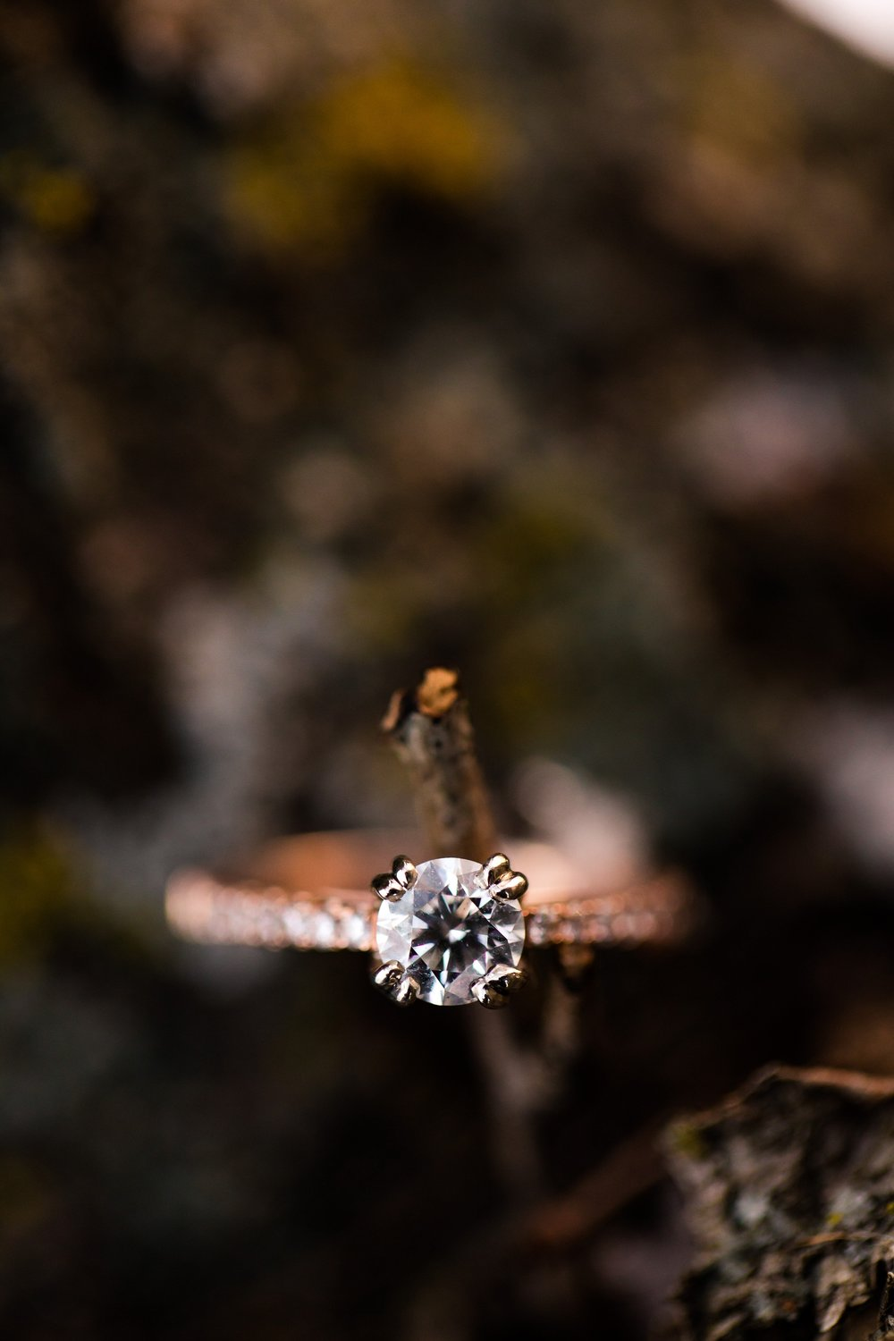 Outdoor, Country Styled, Winter Engagement Session near Audubon, MN by Amber Langerud Photography | Jena & Joel | Ring Picture