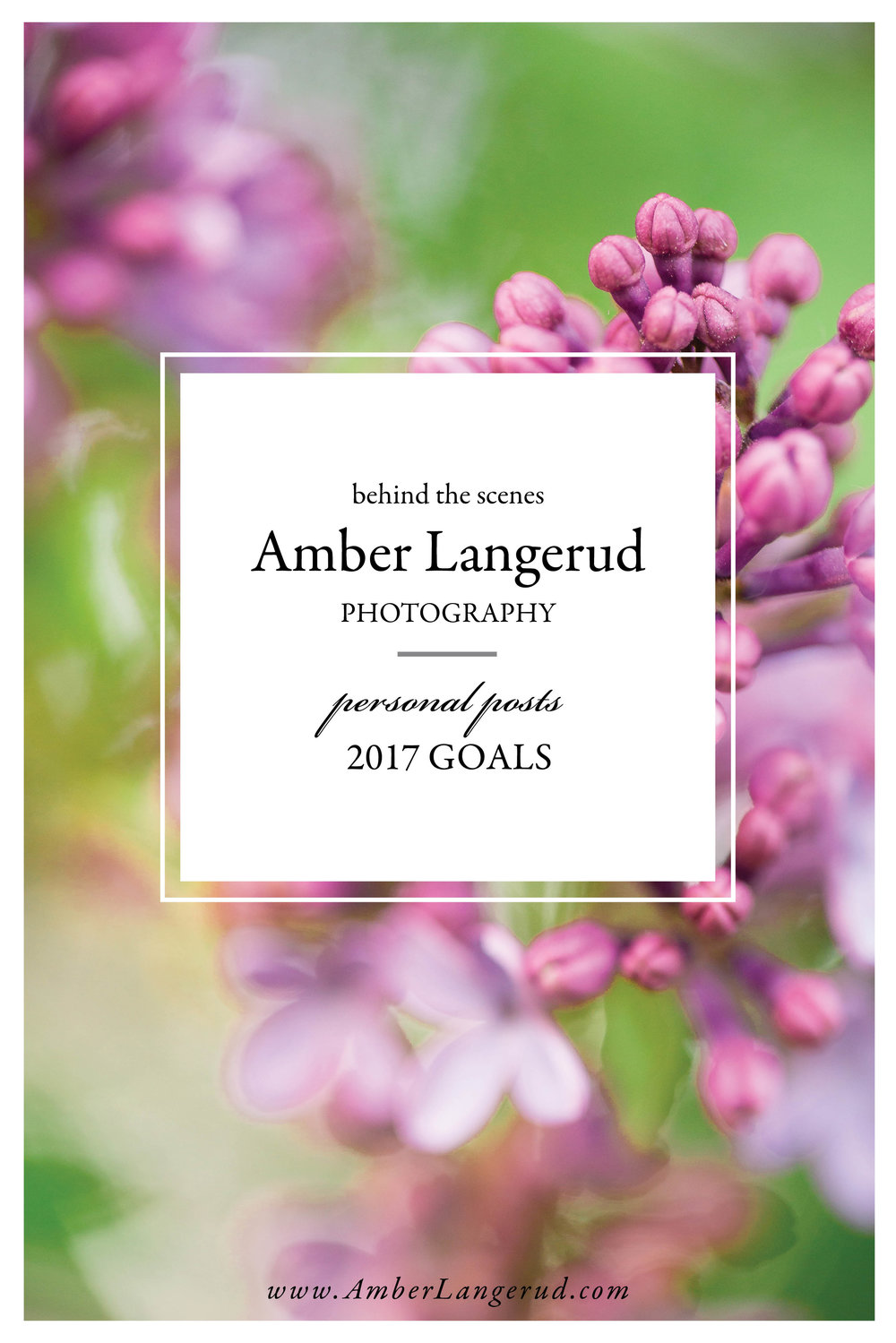 Amber Langerud Photography personal post - behind the scenes and 2017 goals