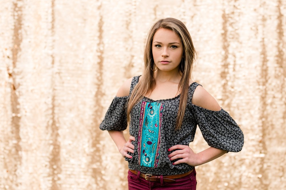 Country & Gold Sequin Backdrop Styled Senior Session near Audubon, MN by Amber Langerud Photography | Anna Donner