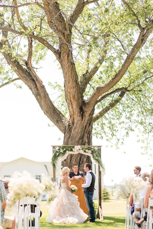 Amber Langerud Photography_Minnesota Barn Wedding_5176.jpg