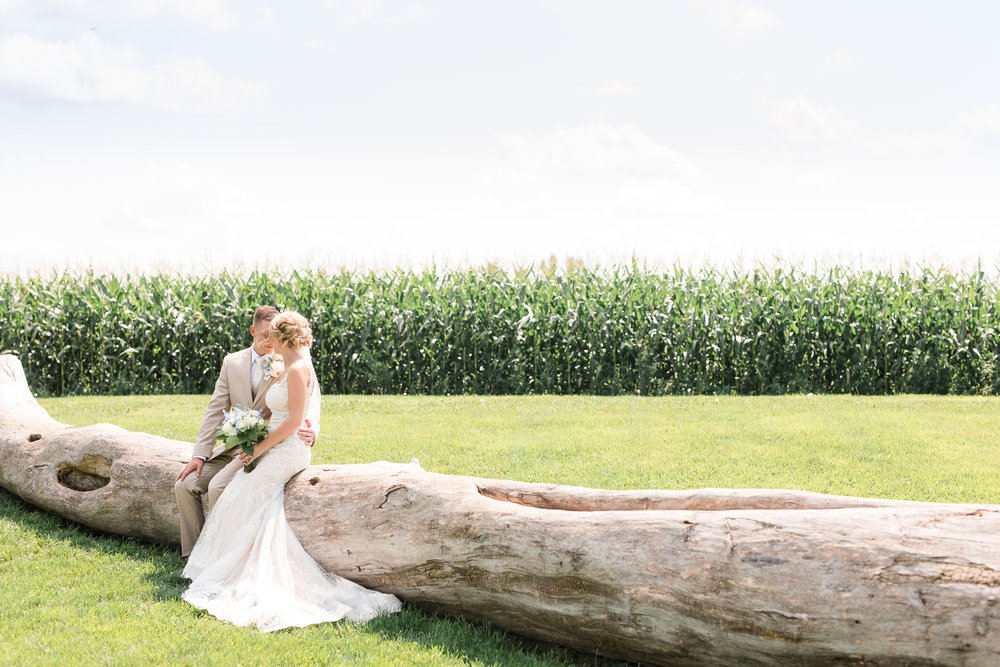 Amber Langerud Photography_Vintage Garden Minnesota Barn Wedding_5336.jpg