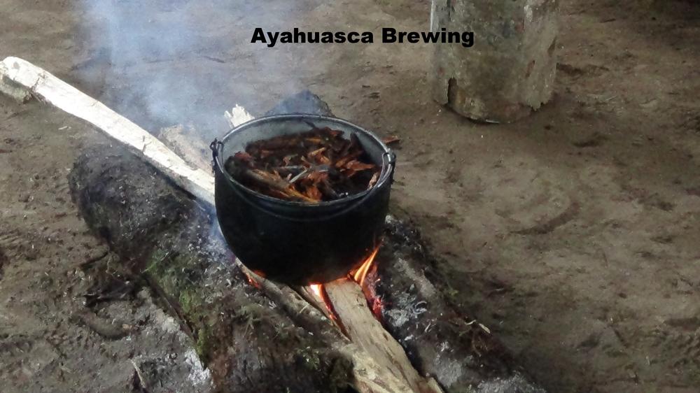 Cooking Ayahuasca