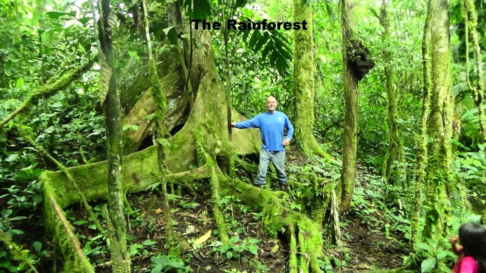 Ken in the Ecuadorian rainforest