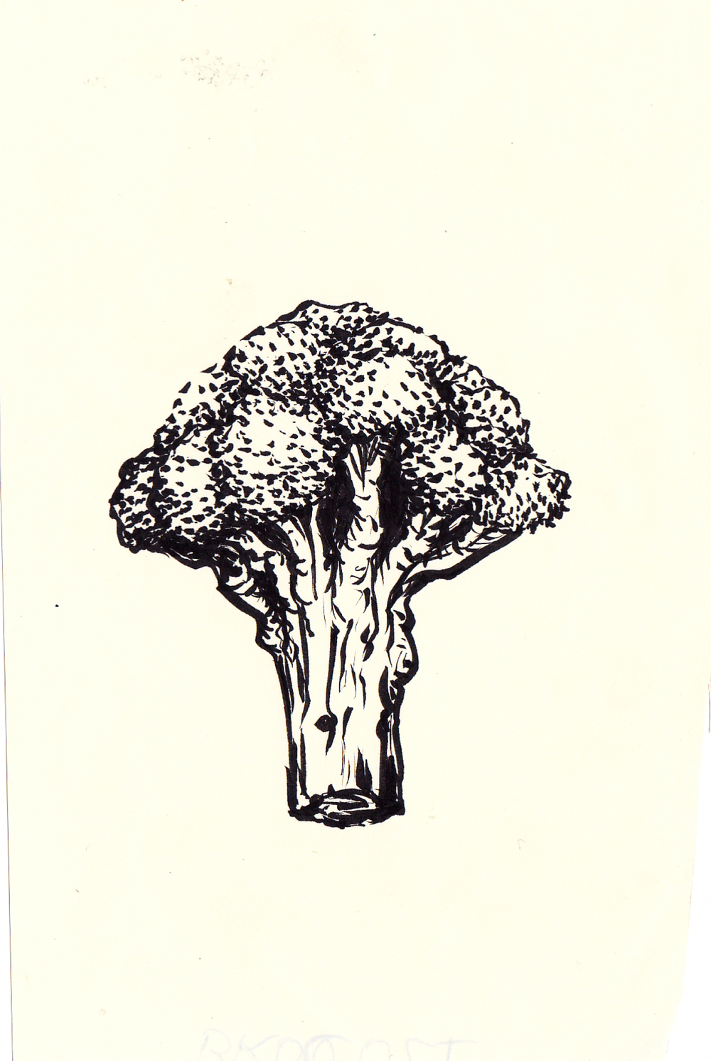 Brocco-Tree?