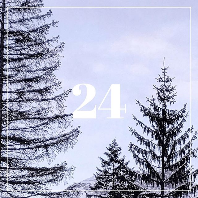 Day 24. Christmas Dinner.  Finally, it's time to get together with family! And I'm ready for it.  I wish you a Merry Christmas and wonderful time of the year.  Thank you for taking your time to check the Si Advent Calendar and I hope you've enjoyed it.  See you next year with more exciting content again. 💕 👋🏻 . Christmas spirit photo by @alena_golden  #SiAdventCalendar