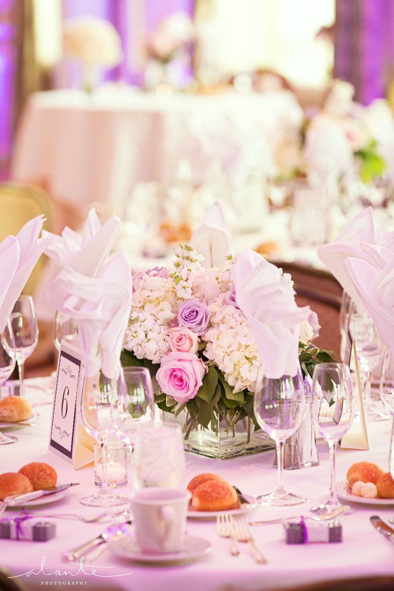 Natasha and Steven   Villa Academy Wedding   WAC Wedding Reception ...