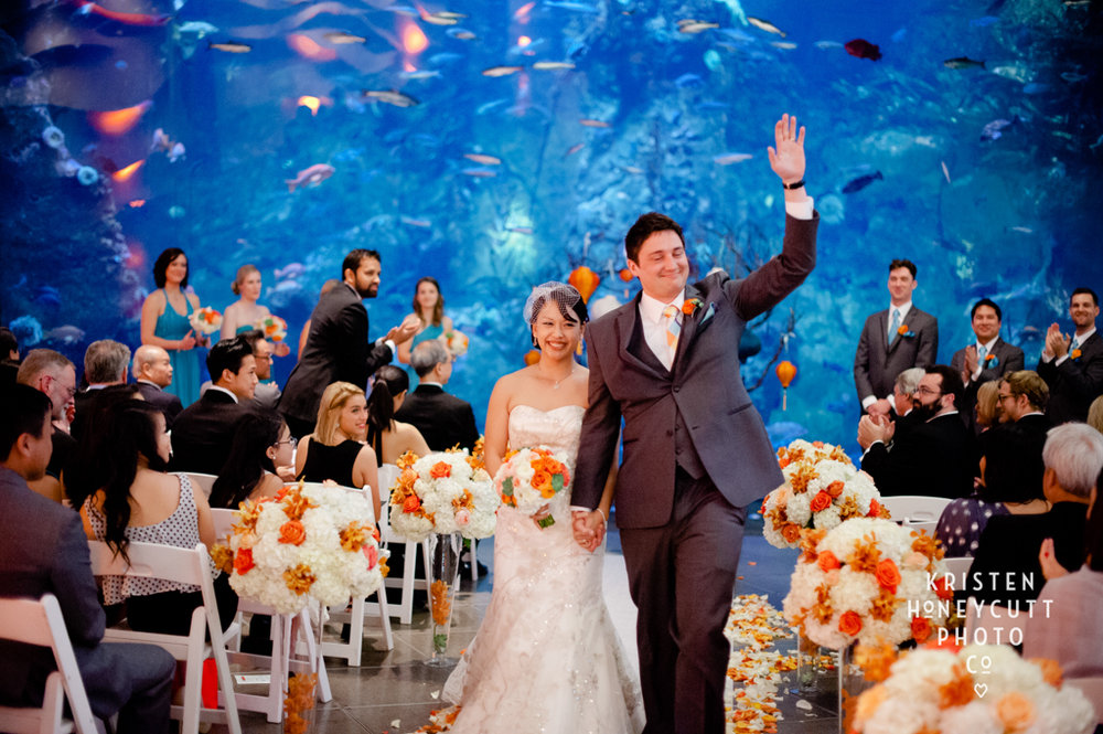 Orange and Aqua Wedding at the Seattle Aquarium