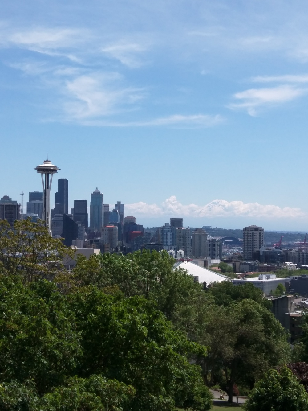 The view from Kerry Park.
