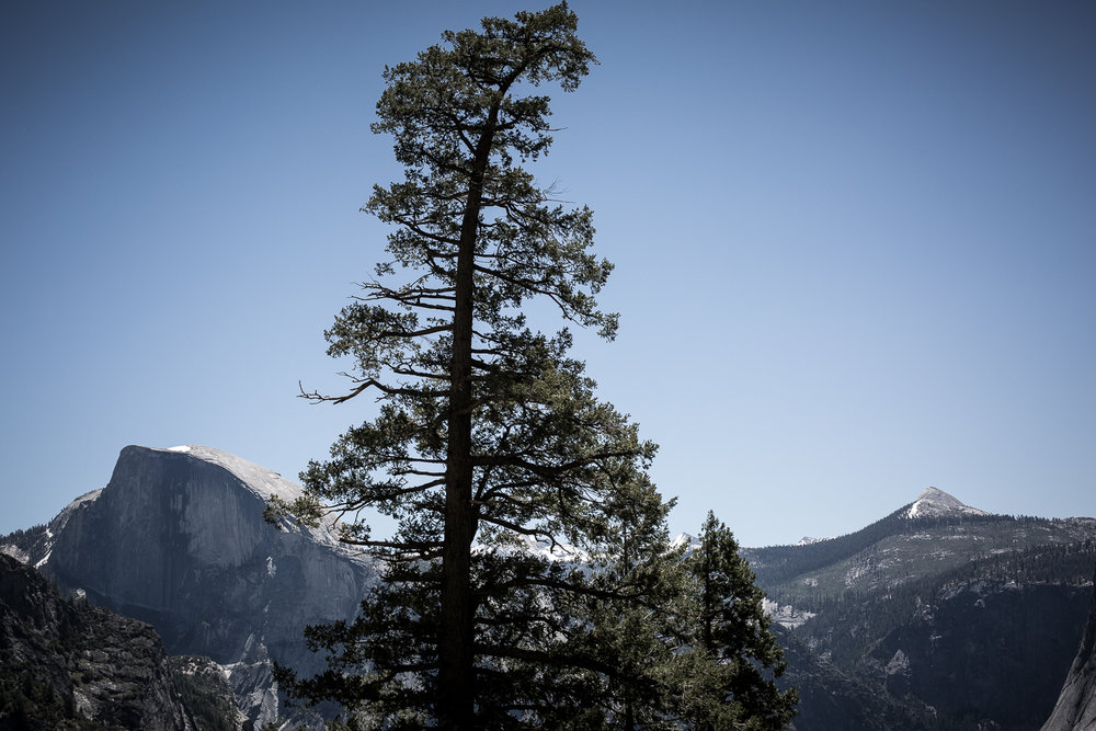 Yosemite National Park, Junho 2017