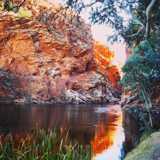 9. Olivia Collins_Photography_Ellery Creek_Big Hole_Alice Springs_Northern Territory_Outback_Australia.jpg
