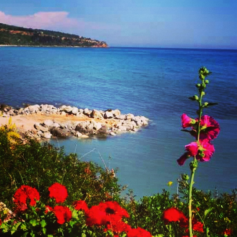12. Olivia Collins_Photography_Coastal snapshot_Kefalonia_Greece.jpg
