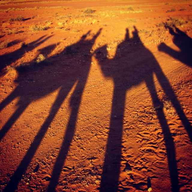 10. Olivia Collins_Photography_sunset_camel ride_Alice Springs_Northern Territory_Outback_Australia.jpg