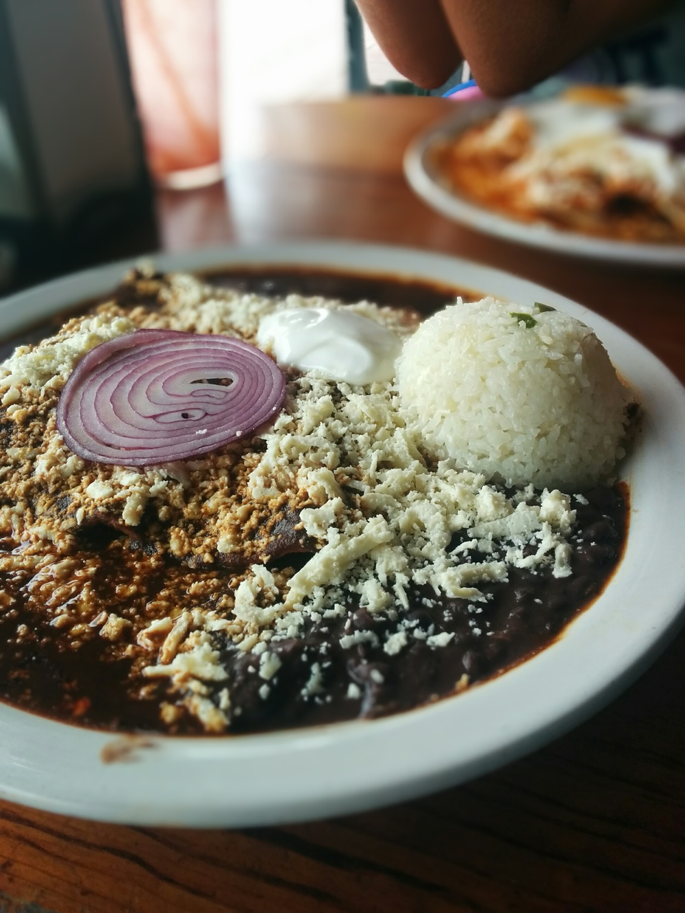 Mmm.. take me back. Chicken Mole Enchiladas.
