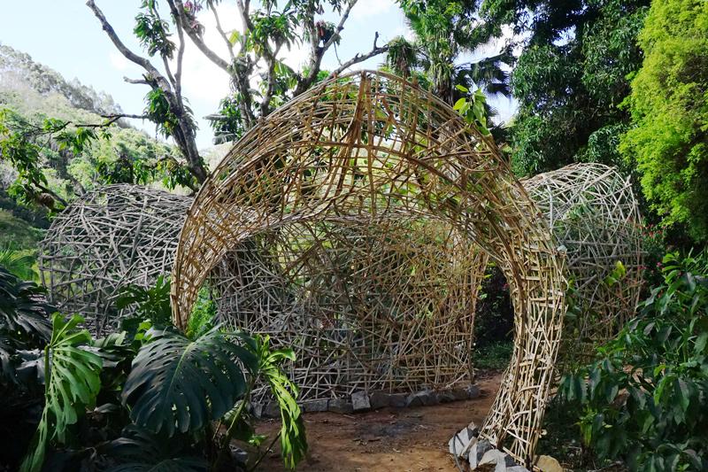 estrutura de ripas de bambu / bambu entrelaçado / em forma de ninho tecido