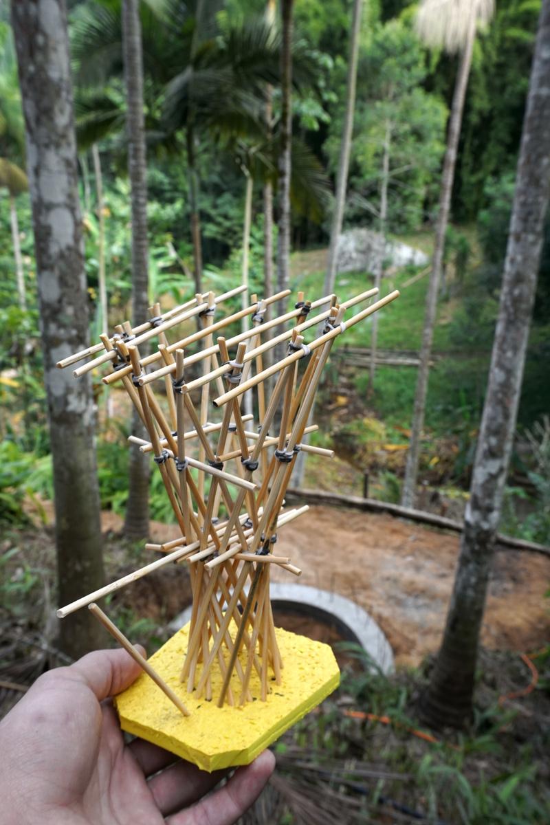 maquete de torre de bambu com vista na localização final